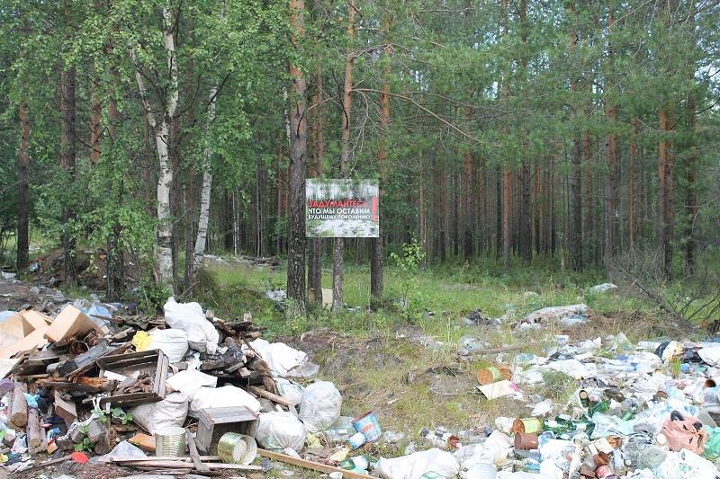 Полигон твердых коммунальных отходов в Сторожевске должен заработать в ноябре 2017 года