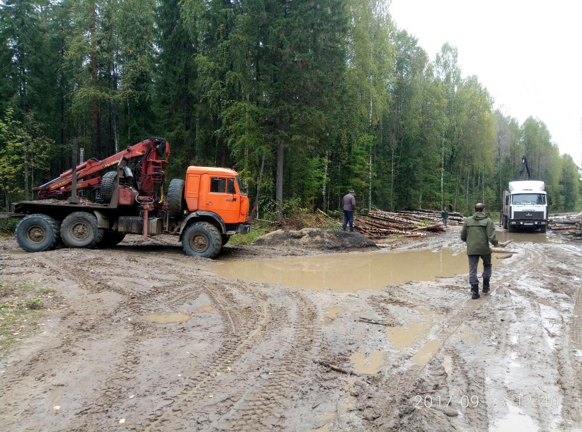 В Прилузском районе лесовозы игнорируют запрет на проезд большегрузного транспорта