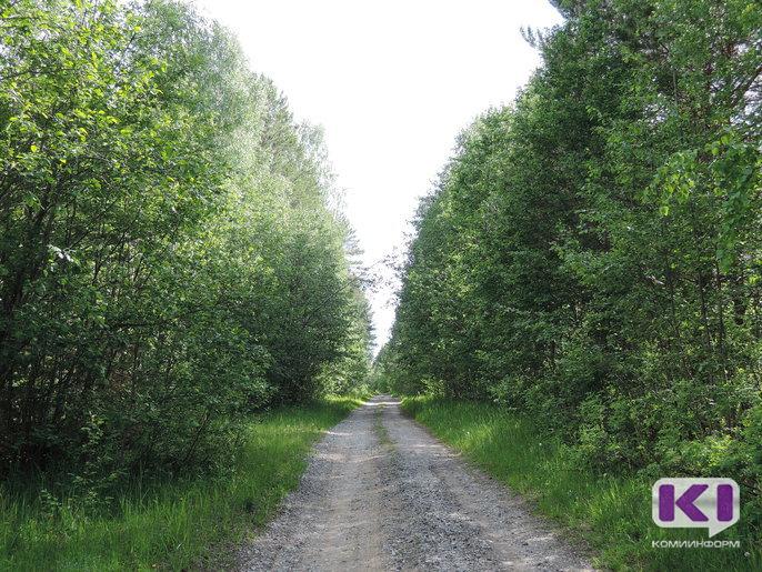 Кировская компания нарушает права жителей Койгородского района на беспрепятственное пользование лесными угодьями