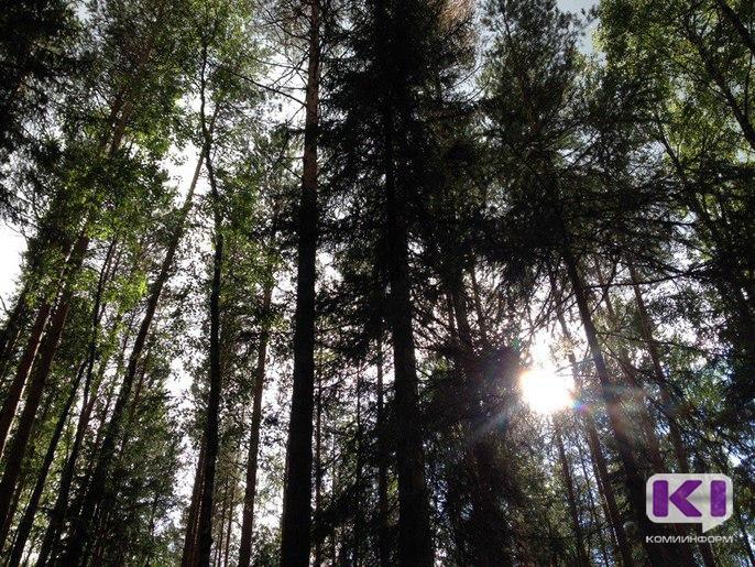 Создание нового заказника на Удоре позволит объединить охраняемые природные территории Коми и Архангельской области