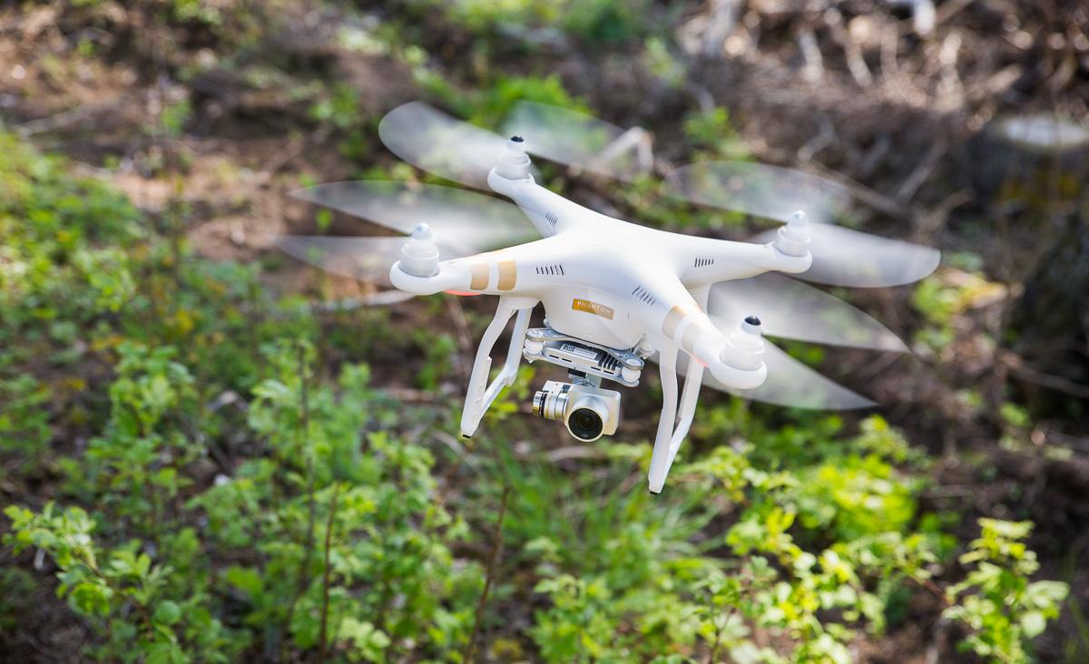 В Коми с помощью беспилотника обследовали земли сельхозназначения в труднодоступных местах