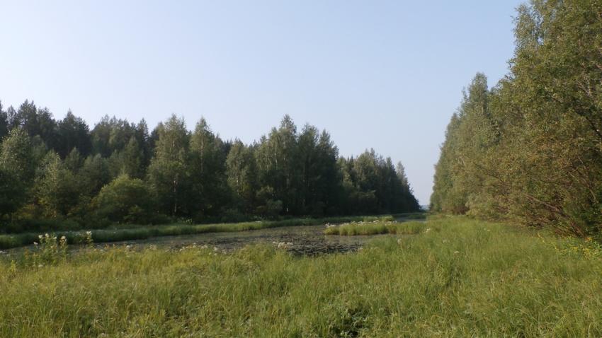 Следователи завершили проверку по факту обнаружения тела в водоеме в Дырносе