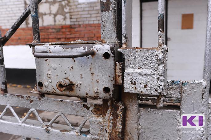 Жительница Прилузья, ударившая ножом мать, получила срок, несмотря на заступничество жертвы