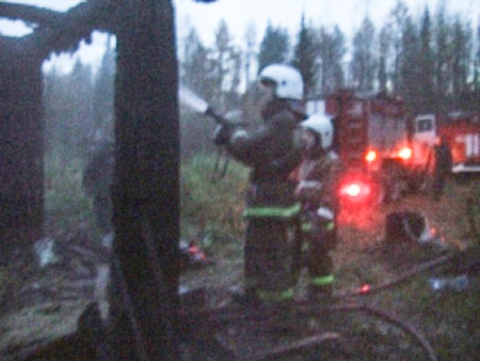 Пожарные отстояли дачный домик в Дырносе