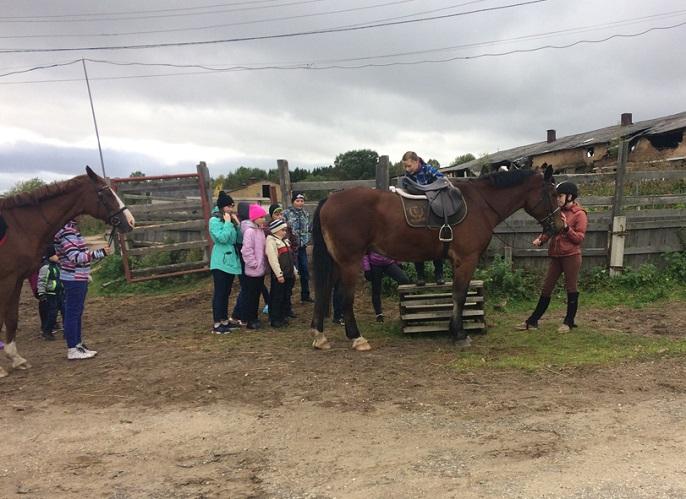Воспитанники сыктывкарского детского дома №1 пообщались с лошадьми-чемпионами