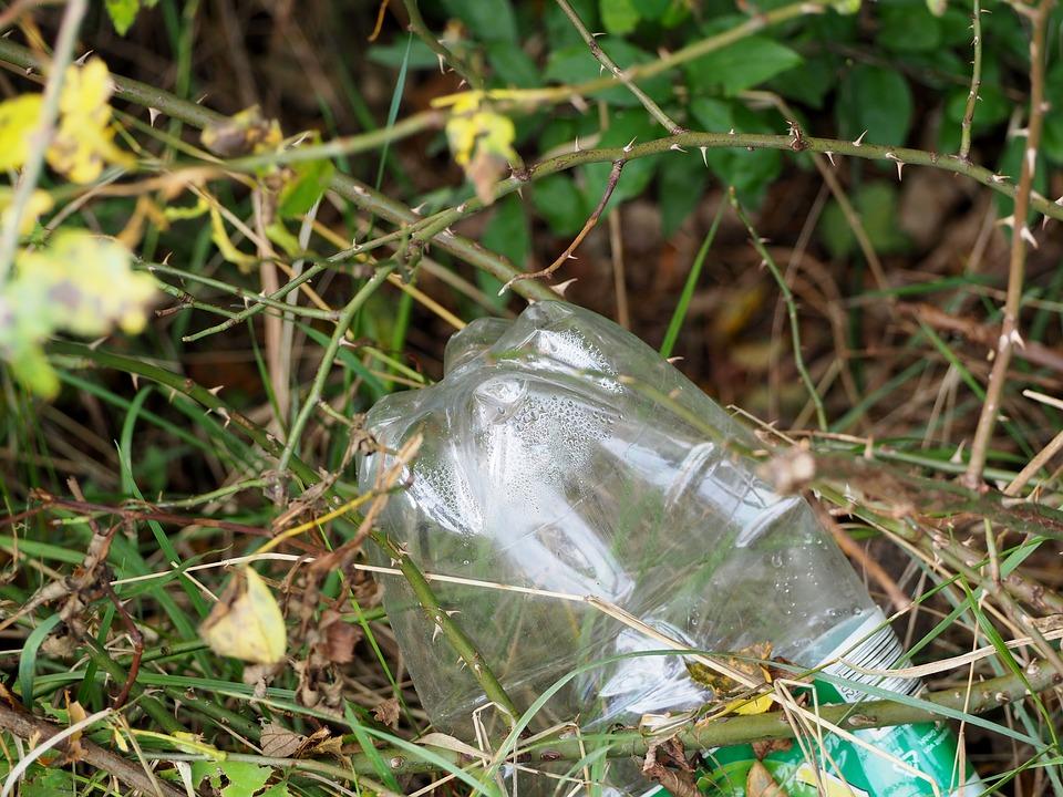 Экологи из Коми предложили сжимать мусор, прежде чем выбрасывать его
