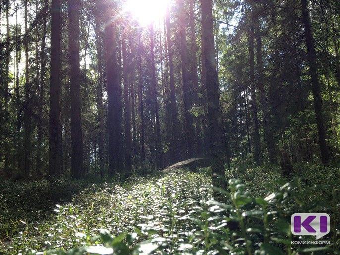 В Усть-Куломском районе зарегистрировано 14 фактов заражения геморрагической лихорадкой