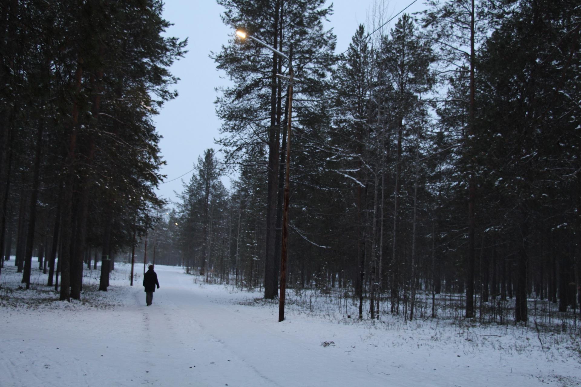 Было-стало: В лесопарковой зоне Печоры восстановлено освещение