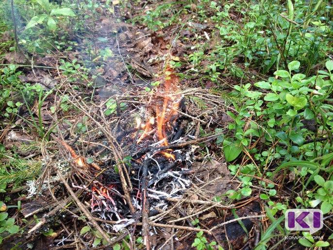 Летчики в Коми отслеживают лесные пожары с этого года напрямую через планшеты