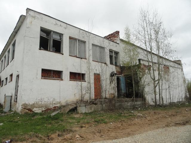 chov-59.jpg