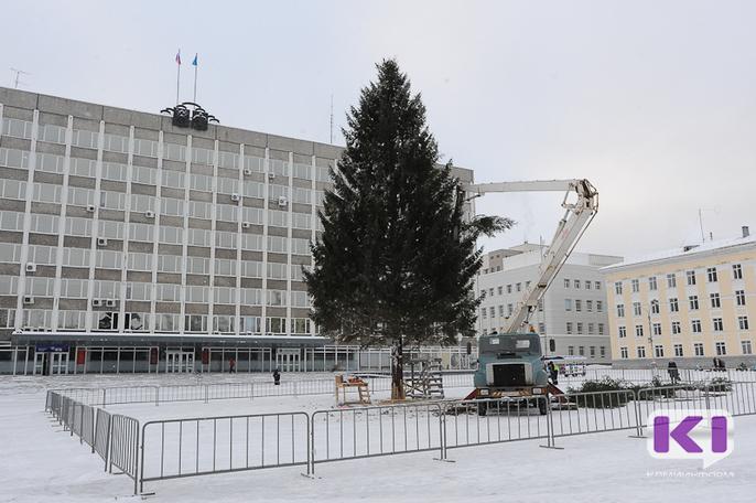 В Сыктывкар привезли главную елку