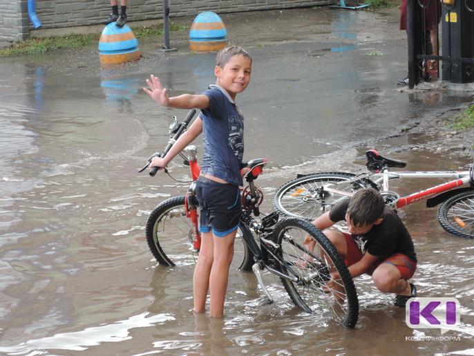 Прошлый год стал для Коми одним из самых теплых и мокрых