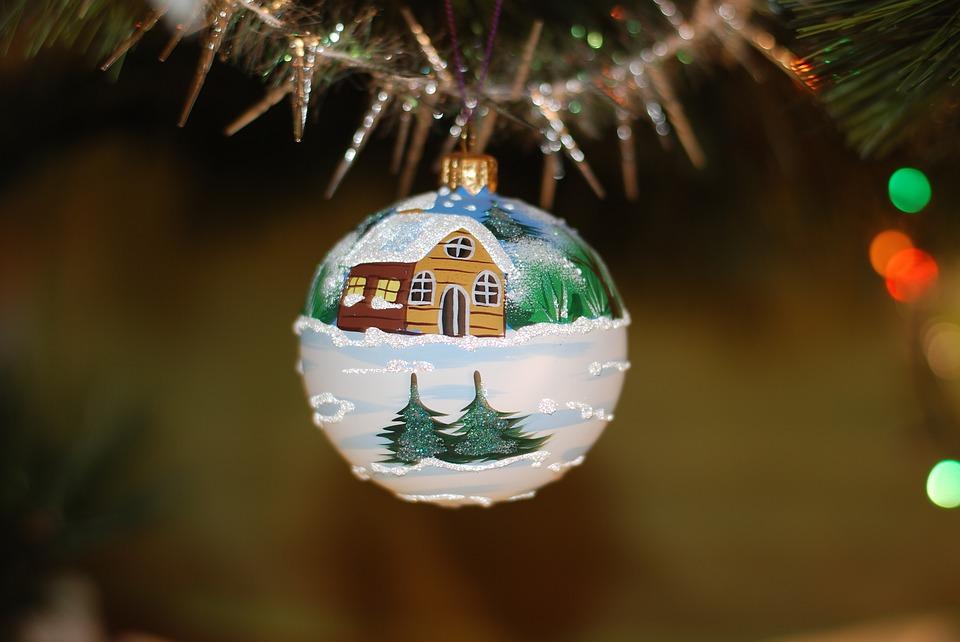 Ёлки-палки: в Эжве у жителей принимают отжившие свое новогодние деревья