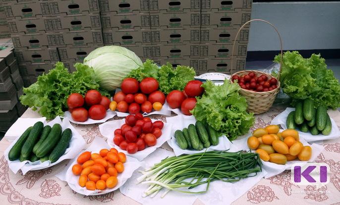 В сельское хозяйство Коми привлекут 740 миллионов рублей прямых вложений