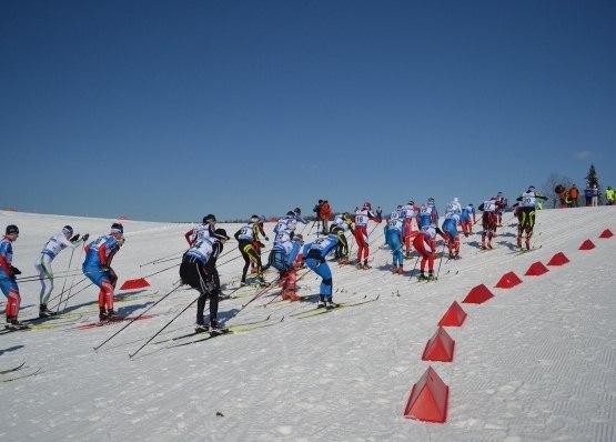 Лыжники Коми завоевали медали на Первенстве Северо-Запада