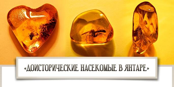 Anons-vystavki-_Doistoricheskie-nasekomye-v-yantare_.jpg