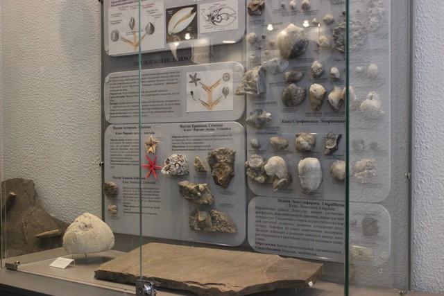 paleontologiya_006.jpg