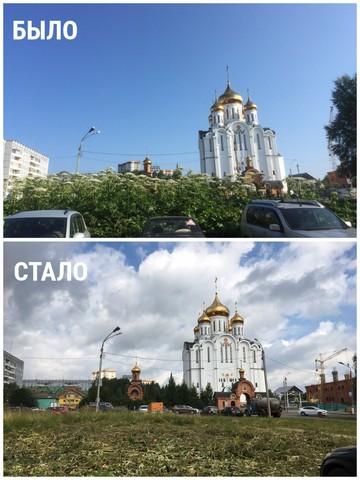 skos_borshevika_004.JPG
