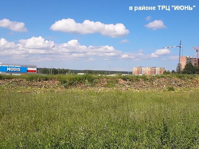 skos_borshevika_008.jpg
