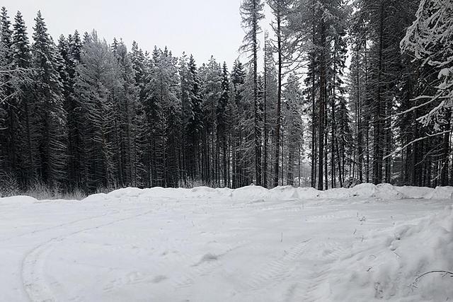 parkovka_02.jpg