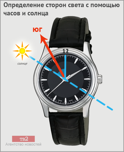 swatch111.png