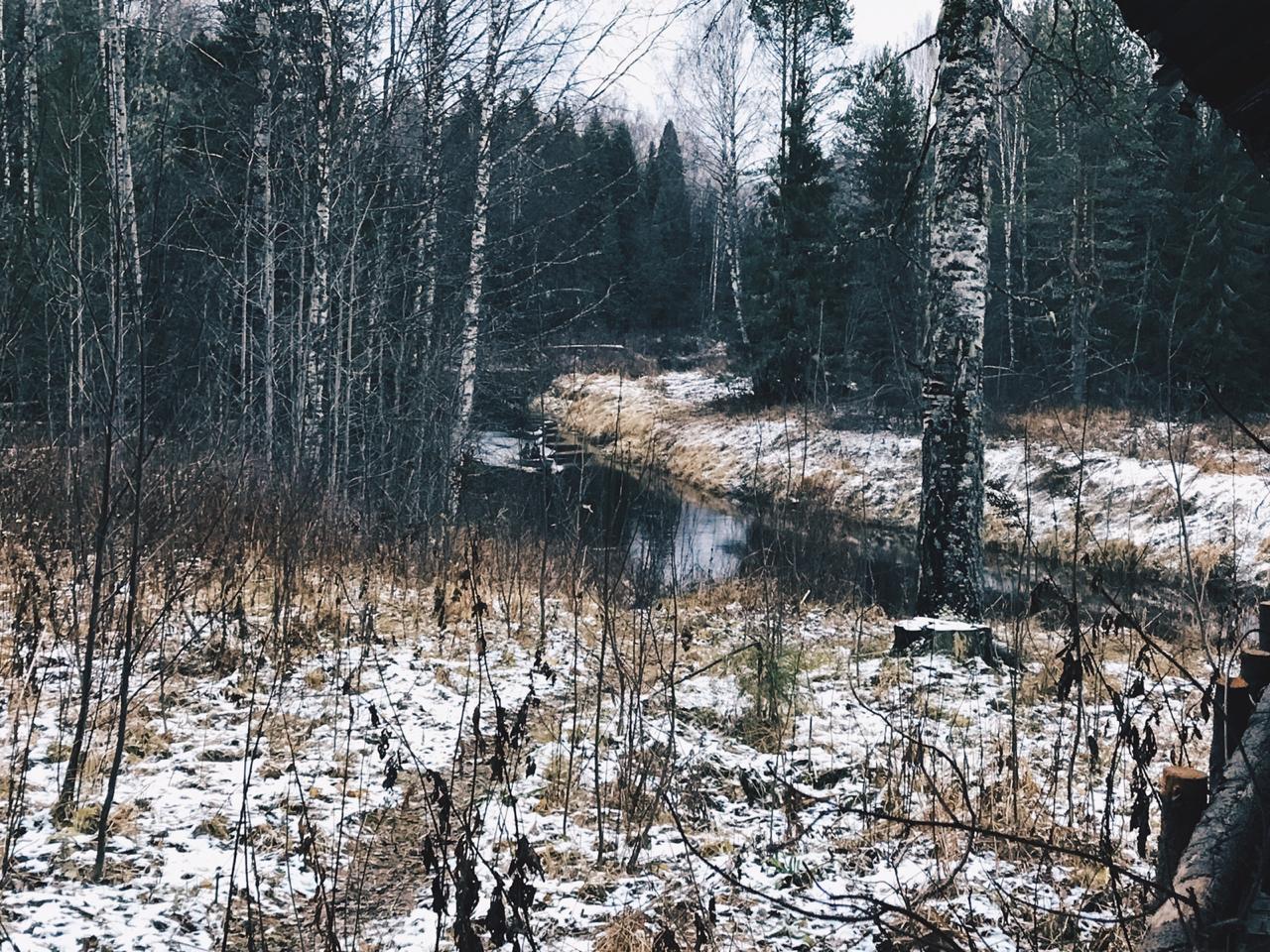 """В Коми начал работу национальный парк """"Койгородский"""""""