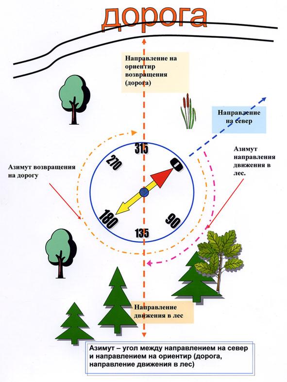 kompas-1.jpg