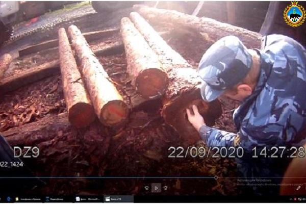 2.-V-IK-25-presechena-ocherednaya-popytka-dostavki-osughdennym-zapreschennyh-predmetov-spryatannyh-uhischrennym-sposobom.jpg