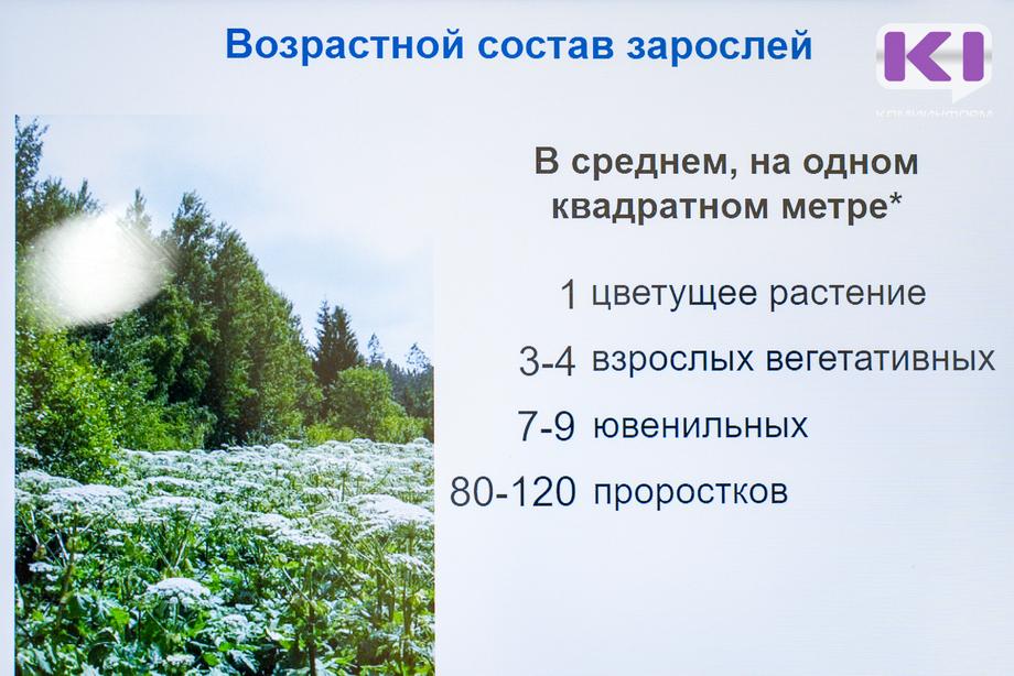 VSH06710-01.jpg